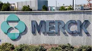 Merck Given Another Shot At Dodging Fosamax Lawsuits [Video]