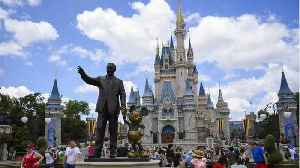 Former Disney Employee Allegedly Stole Thousands From Epcot And The Magic Kingdom [Video]