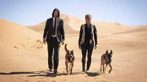 'John Wick 3' Exceeds Box Office Expectations And Topples 'Endgame' [Video]
