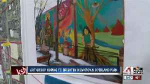 Potential murals in downtown Overland Park await city council approval [Video]