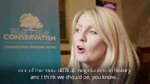 Esther McVey suggests Tory Cabinet could be 'dismantling Brexit' [Video]