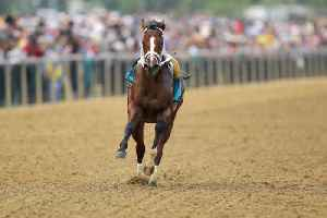 News video: Bodexpress Steals Preakness Spotlight By Running Entire Race Without a Jockey