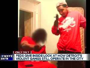 Gangs of Detroit: Videos bring spotlight to violence of city's organized crime [Video]