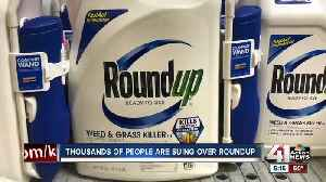 Consumers looking for alternatives to popular weed killer [Video]