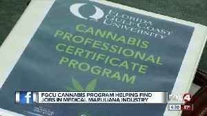 FGCU program aims to help job seekers in medical marijuana industry [Video]