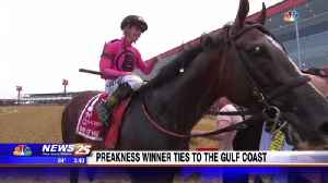 Preakness winner has ties to the Gulf Coast [Video]