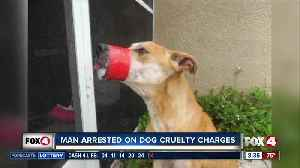 Man arrested on aggravated animal cruelty charges [Video]