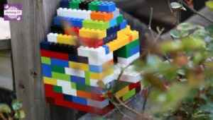 How to Build a Lego Birdhouse with Your Kids [Video]