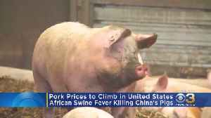 Disease Hitting China's Pigs To Raise Price Of Pork In U.S. [Video]