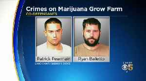 Pot Growers Who Kept Sexually Abused Teen Girl In Metal Box Face Jail Time [Video]