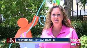 2018 was deadliest year on record for hot car deaths [Video]