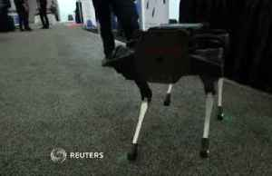 Robotics comes into 'maturity' at annual ICRA conference [Video]