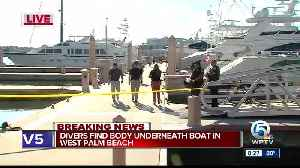 Body recovered from Palm Harbor Marina in West Palm Beach [Video]