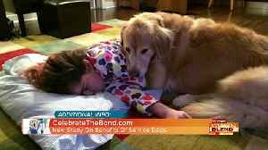 Benefits Of Service Dogs! [Video]