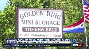 Thieves bust into more than 60 self-storage units in Rosedale, Dundalk [Video]