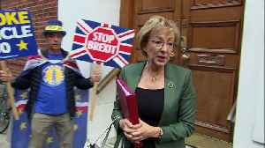 Mr Stop Brexit gatecrashes Andrea Leadsom [Video]