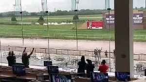 Crowds cheer on man running around course after storm cancels horse racing at Lonestar Park, Texas [Video]