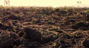 Washington State Becomes The First in the Nation to Allow Human Composting [Video]