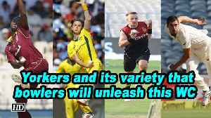 Yorkers and its variety that bowlers will unleash this WC [Video]