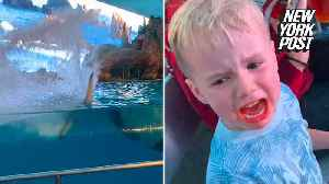 Killer whale soaks unhappy tot in this cute video [Video]