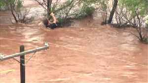 Dramatic Video Shows Bystanders, Firefighters Rescue Woman Clinging to Tree in Oklahoma Floodwaters [Video]