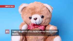 Brits Like Their Teddys [Video]
