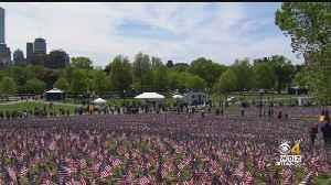 Thousands Of Memorial Flags Planted On Boston Common With Help From Patriots Players [Video]