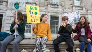 Young Activists Demand Politicians And Business Leaders To Pay Attention To Climate Change [Video]