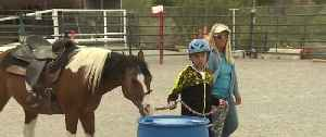 This Weekend: Spirit's Special Rodeo at Horseman's Park [Video]
