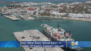 Key West Bans Weed Killer In Wake Of Costly Cancer Lawsuit [Video]