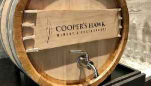 Worker at Cooper's Hawk in Palm Beach Gardens tests positive for hepatitis A; patrons urged to get vaccinated [Video]