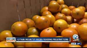 Treasure Coast citrus farmers say lack of funding could hurt their industry [Video]
