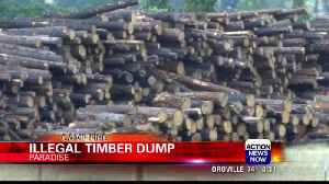 Butte County deals with illegal timber dumping sites from PG&E contractors [Video]
