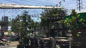 Just a plane coffee please! Thai cafe has WWII aircraft ON ROOF [Video]