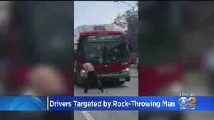 Shirtless Man Goes On Rock-Throwing Rampage Against Buses, Motorists [Video]