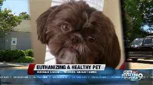 News video: The legal and moral issues of euthanizing a healthy pet