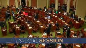 Gov. Walz Calls Special Session To Complete Budget [Video]