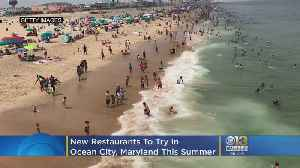 6 New Restaurants To Try In Ocean City, Maryland This Summer [Video]