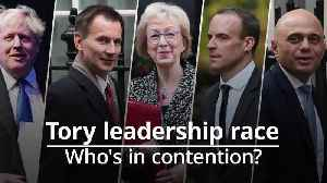 Who could be the next Conservative leader? [Video]