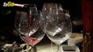 Red or White? What Your Wine Pick Says About Your Personality [Video]