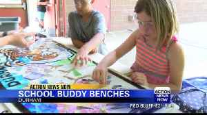 Students from Paradise create art for their school [Video]