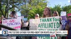 'We are not going anywhere': Protesters gather at Capitol to support abortion rights [Video]