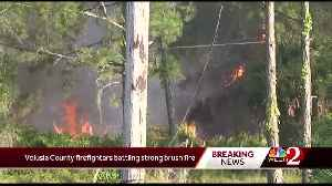 Volusia County firefighters battle strong brush fire [Video]