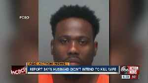 Arrest report says St. Pete man didn't intend to kill pregnant wife [Video]