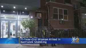 71-Year-Old Woman Stabbed To Death [Video]