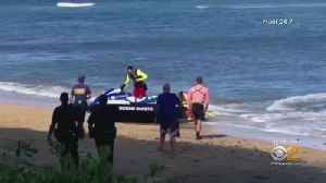 Deadly Shark Attack In Maui [Video]