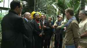 Indigenous chief Raoni welcomed in Lyon to defend the Amazonian forest [Video]