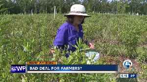 Bad deal for farmers? [Video]