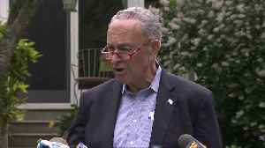U.S. must stop Russian interference in 2020 : Schumer [Video]