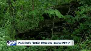 PBA: More Forest Rangers needed in WNY [Video]